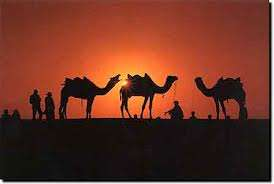 Travel agents & tour operator in rajasthan, holiday package, hotel booking, rent a cab, ti