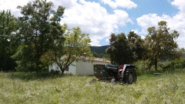 Free farm in spain - rent 0? for your interesting project