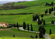 ooty tour travel Agent