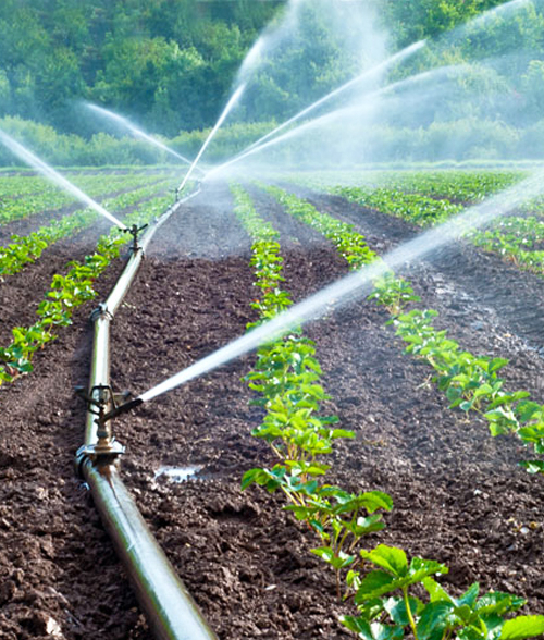Best drip irrigation company in india | ecoflow