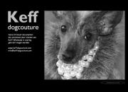 http://www.keffdogcouture.com/