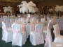 AA1 Balloons 2 Go - Ostrich Feather Wedding Centerpiece Hire - Glasgow