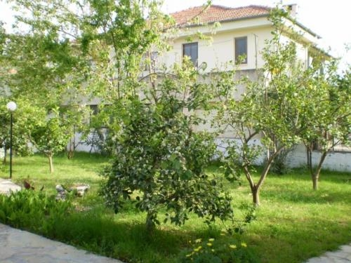 Pictures of Spacious family villa set in fruit garden with private pool 2