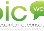 Business Website Consultant