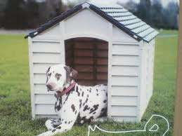 Dog kennels for sale: a comfortable and luxurious house for your dog