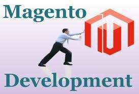 Magento web developer for ecommerce solution