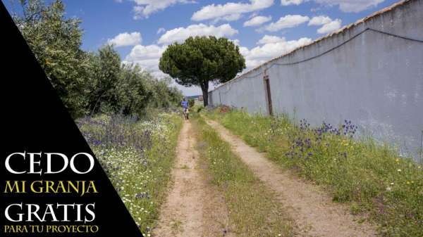 Pictures of Free farm in spain - rent 0?  for your interesting project 4