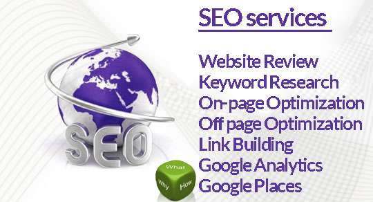 Professional seo services by blue shark solution
