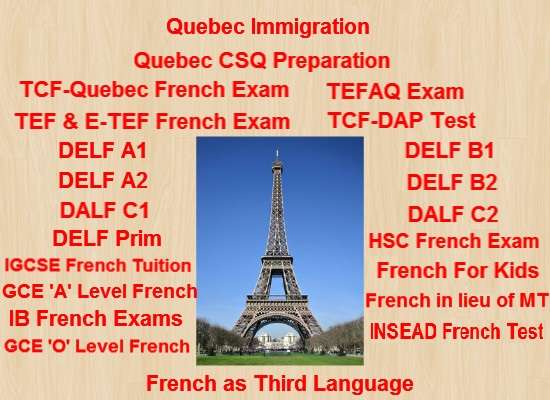 Learn french faster on skype with a native french speaker!