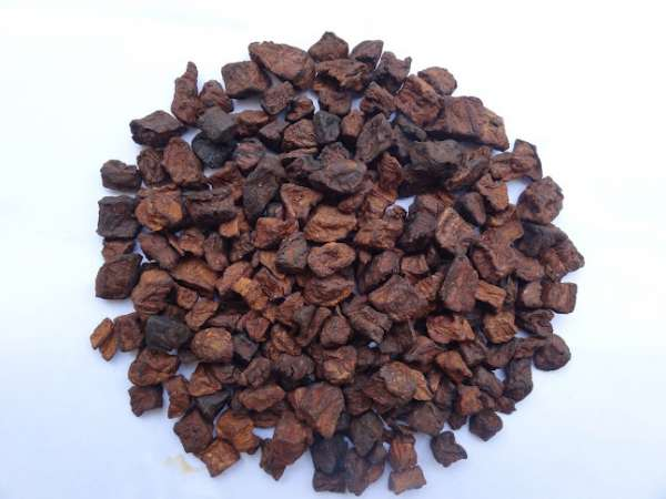 Chicory supplier india| chicory manufacturer in india| where to buy chicory| chicory in in