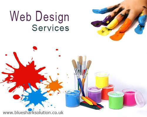 High quality web design services by blue shark solution