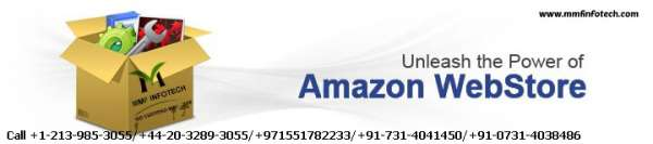 Boost your online amazon webstore with a quality work