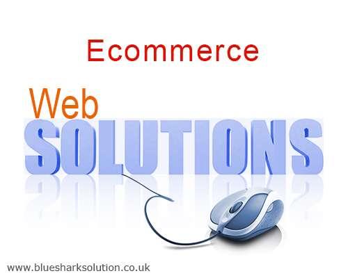 Blue shark solution : best ecommerce solutions provider