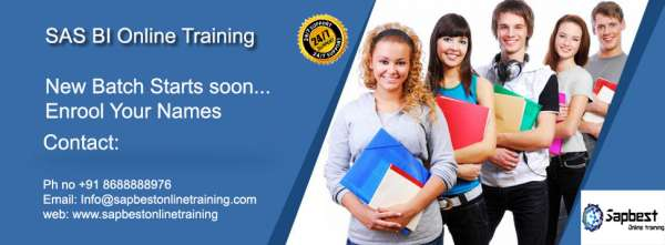 Sas bi online training   sas bi training in hyderabad india   sas bi project support