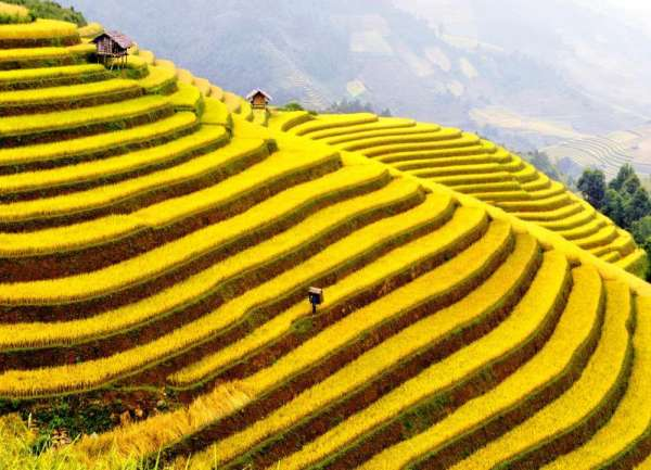 Pictures of Vietnam holidays & tours 2015 4