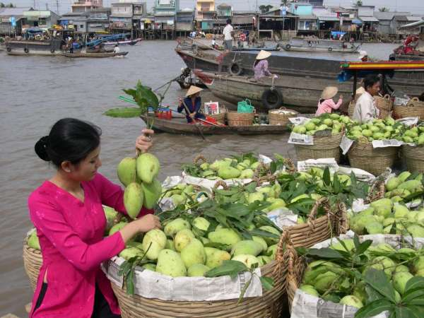 Pictures of Vietnam holidays & tours 2015 6