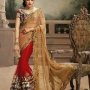 Deep Beige and Red Designer Saree