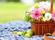 Multipurpose picnic baskets coast & country-6 person hamper