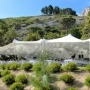 Corporate Event Tents Ireland
