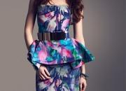 Colorful Silk Pemplum Print Dress
