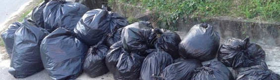Rubbish dumping services