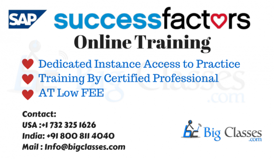 Successfactors online training with dedicated access