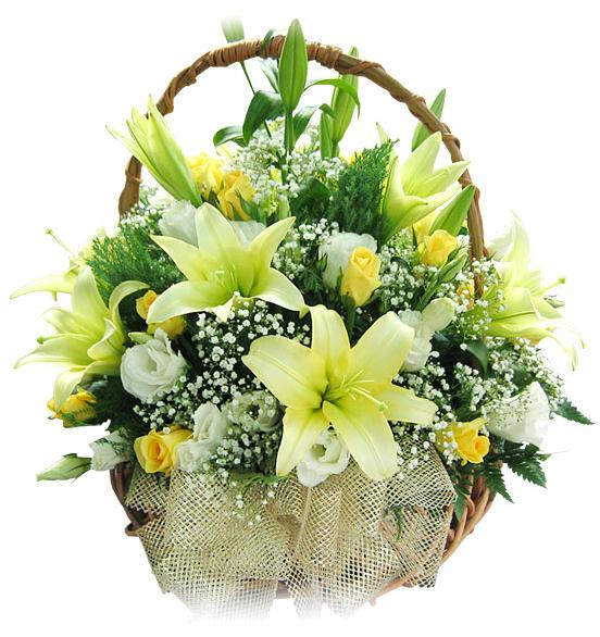 Florist in bangalore, online florist in bangalore