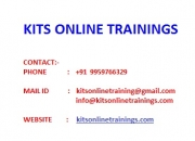 Success factors online training by real time faculties