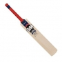 Morrant - Gunn & Moore Cricket Bat