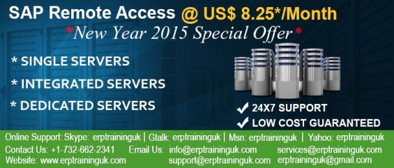 Sap access @ us$ 8.25*/month/user -hurry up 2015 new year special offer