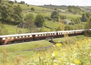 A memorable trip to london with northern belle