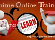 DAC Online training in USA