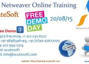 Sap netweaver online training by it industry experienced professional instructors.