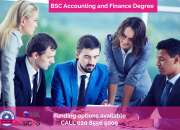 Importance of bsc in accounting and finance