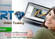 BIRT report training