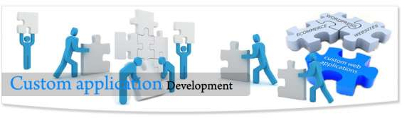 Why custom software development is the best for businesses?