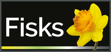 Get residential solutions from letting agents of fisks