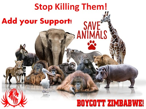 Boycott zimbabwe & stop killing animals
