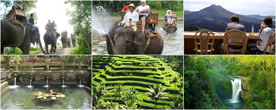 Budget bali holiday packages   book budget bali tour package online at baba travel