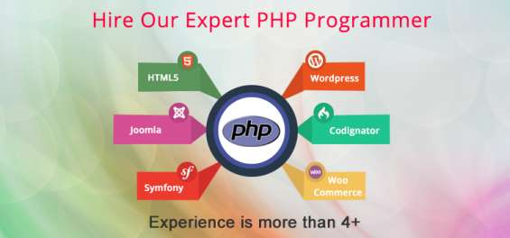 Hire our expert php programmers