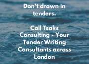 Tender Preparation Services