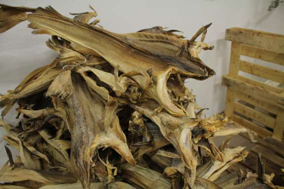 Premium dried stockfish/ stockfish head.