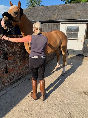 Buy horse riding tight sale online - benzequestrian